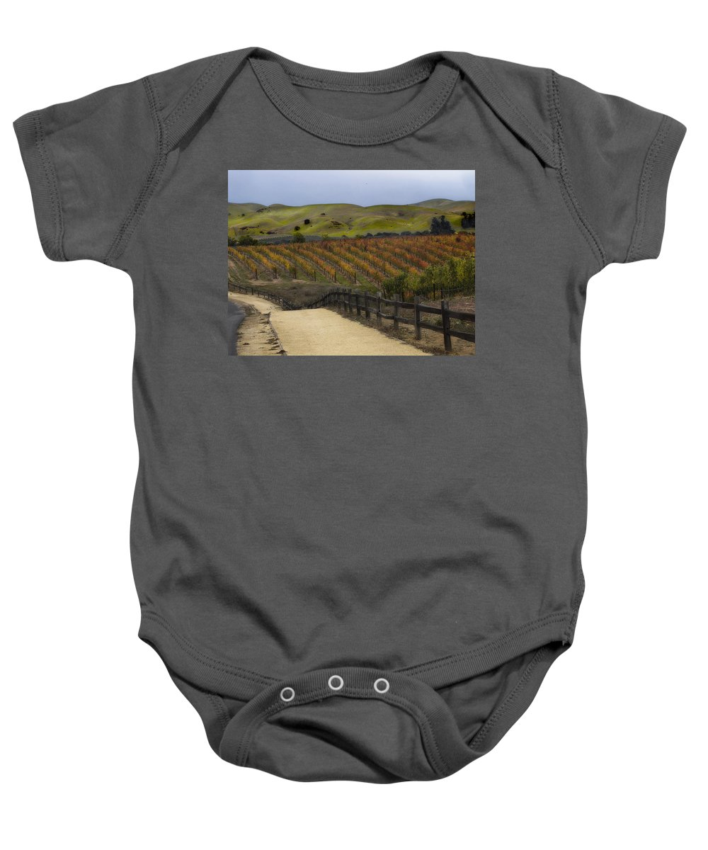 Landscape Baby Onesie featuring the photograph Vineyard 2 by Karen W Meyer