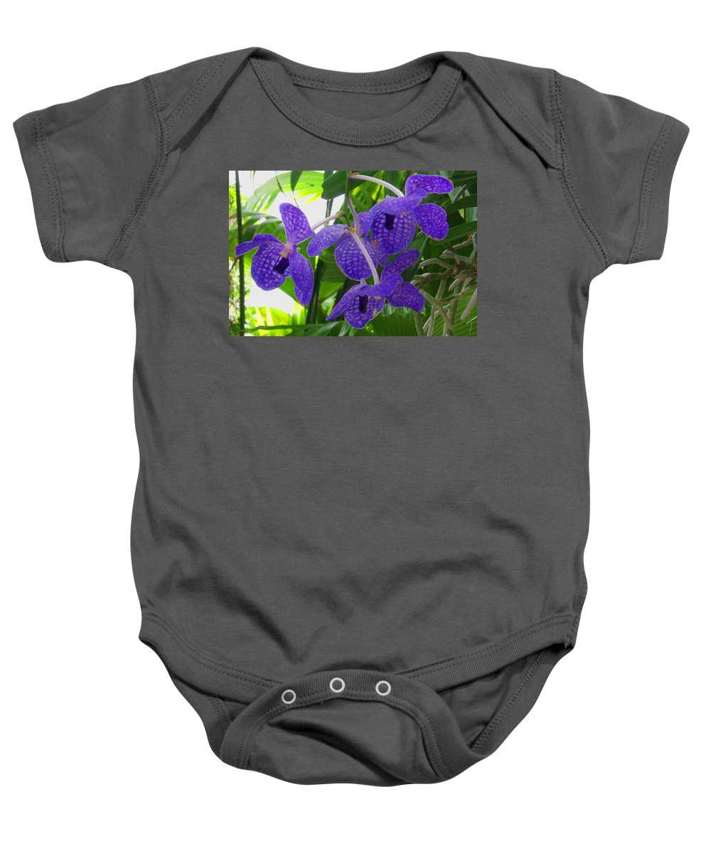 Orchid Baby Onesie featuring the photograph Violet Orchid Trio by Laurie Paci