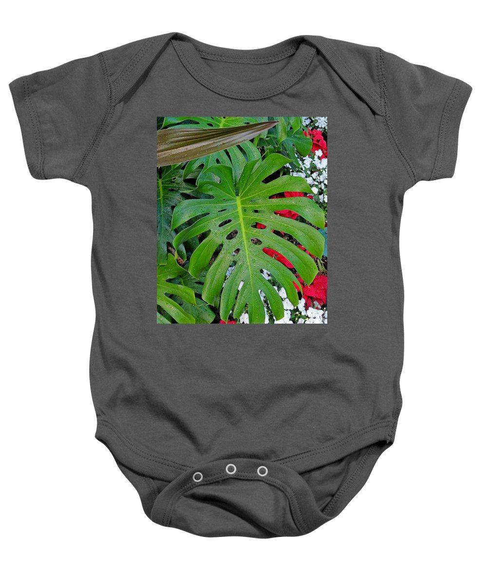Waikiki Baby Onesie featuring the photograph Waikiki Split Leaf by Robert Meyers-Lussier