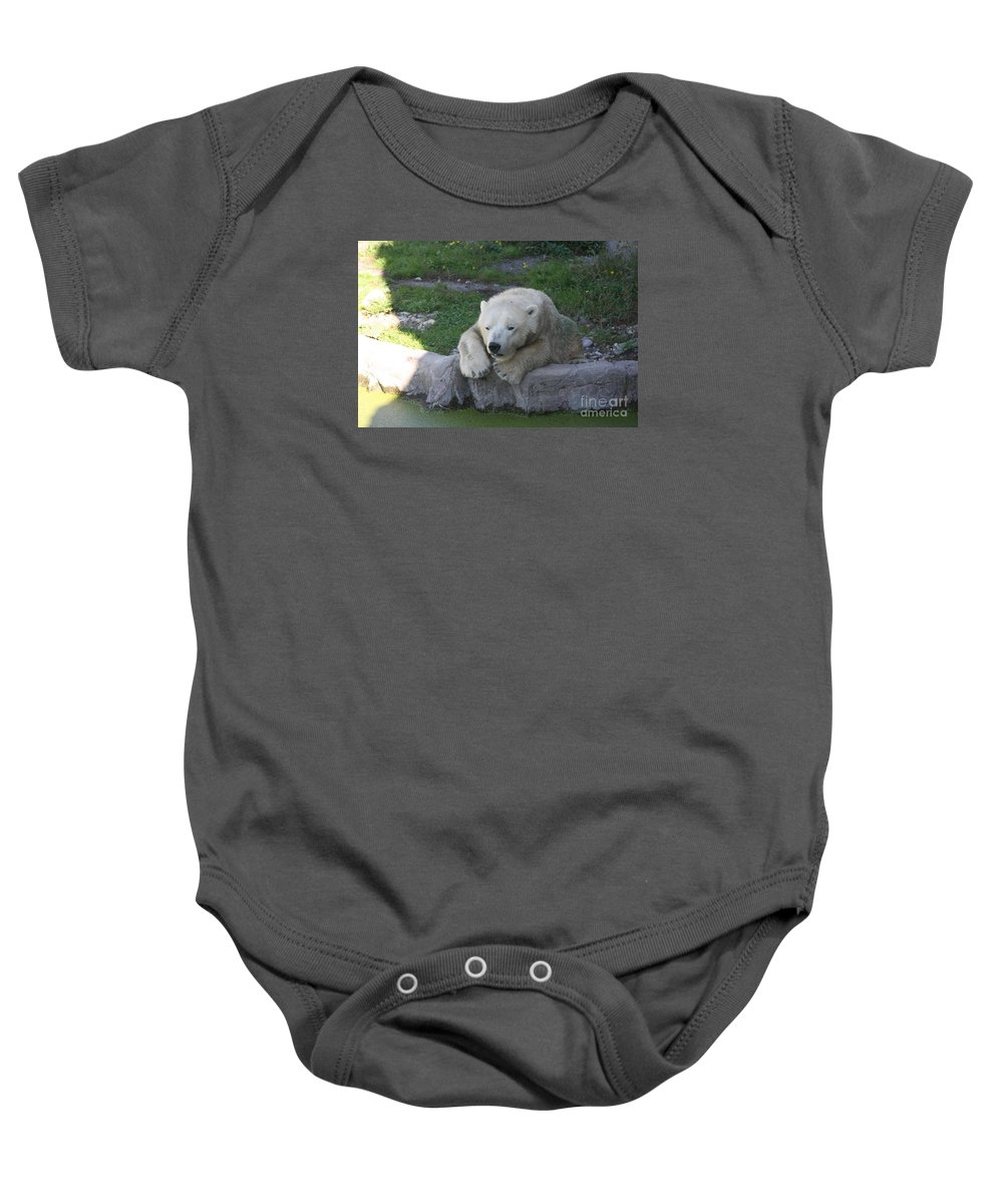 Polar Bear Baby Onesie featuring the photograph Waiting For Snow by Christiane Schulze Art And Photography