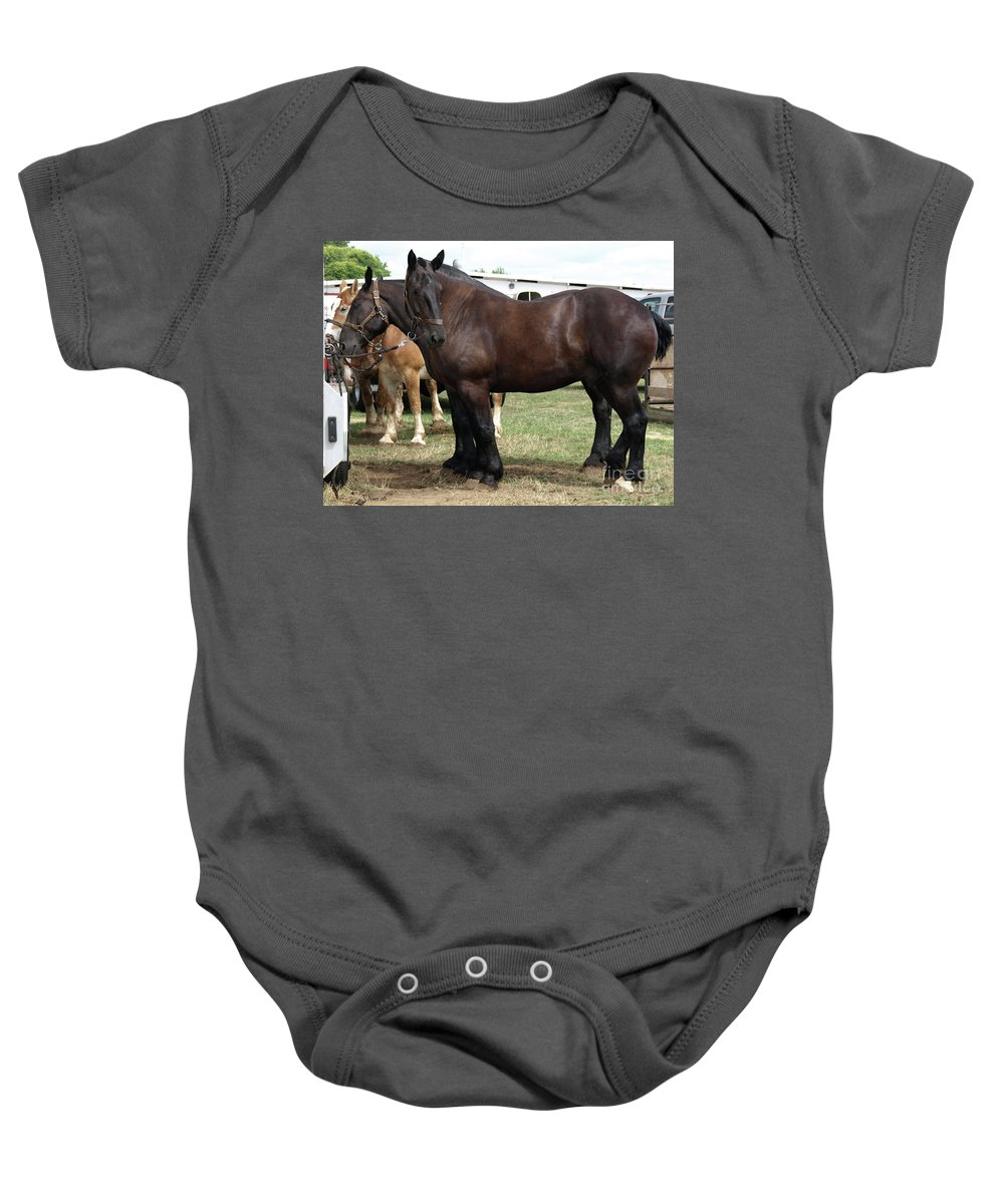 Draft Horse Baby Onesie featuring the photograph Waiting To Work by Shari Nees
