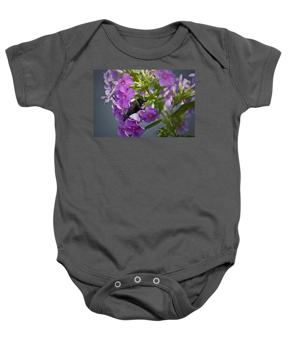 Bumblebee Baby Onesie featuring the photograph Wake Up Sleepyhead by Teresa Mucha