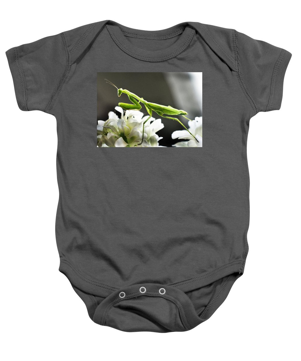California Baby Onesie featuring the photograph Walkin Tall On Silk by Norman Andrus