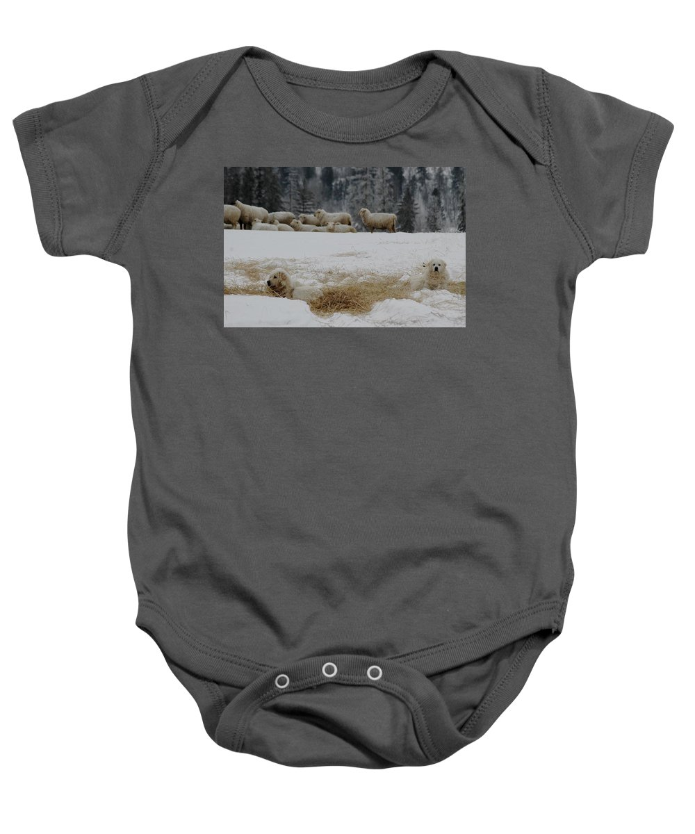 Farm Baby Onesie featuring the photograph Watching The Herd by Mary Sword