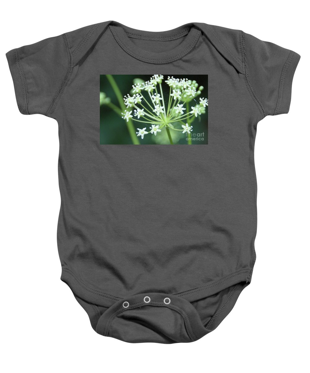 Flower Baby Onesie featuring the photograph Web Design - 2 by Linda Shafer