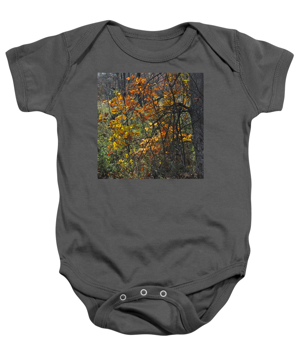 Fall Baby Onesie featuring the photograph Web Of Color by Tim Nyberg