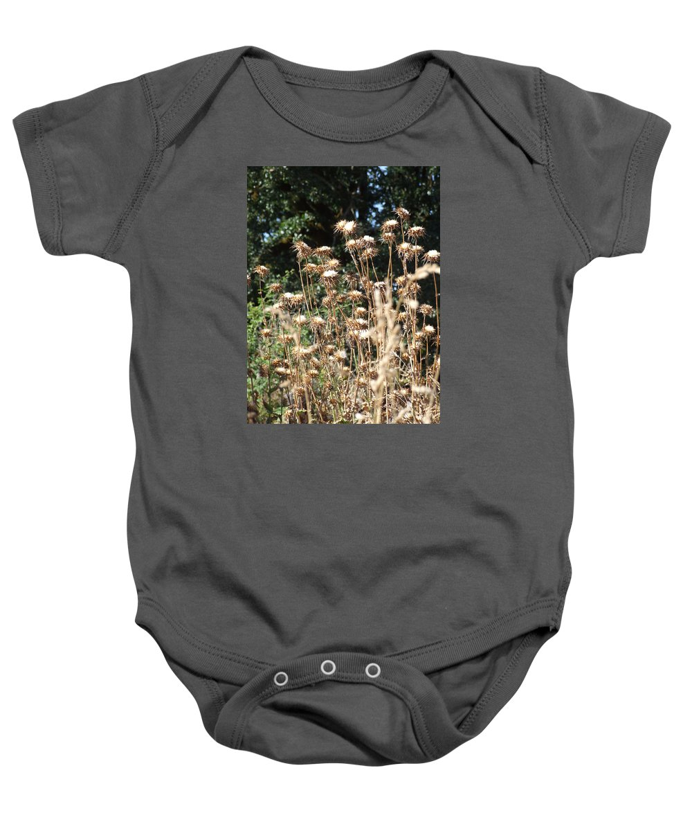 Summer. Weeds. Baby Onesie featuring the photograph Weed. Dryed Weed. by Delton Maddox