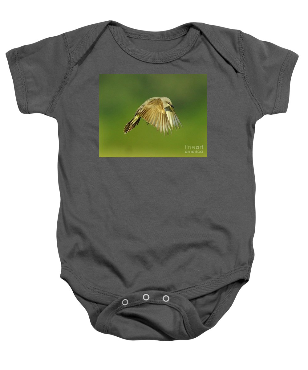 Animal Baby Onesie featuring the photograph Western Kingbird Hovering by Robert Frederick