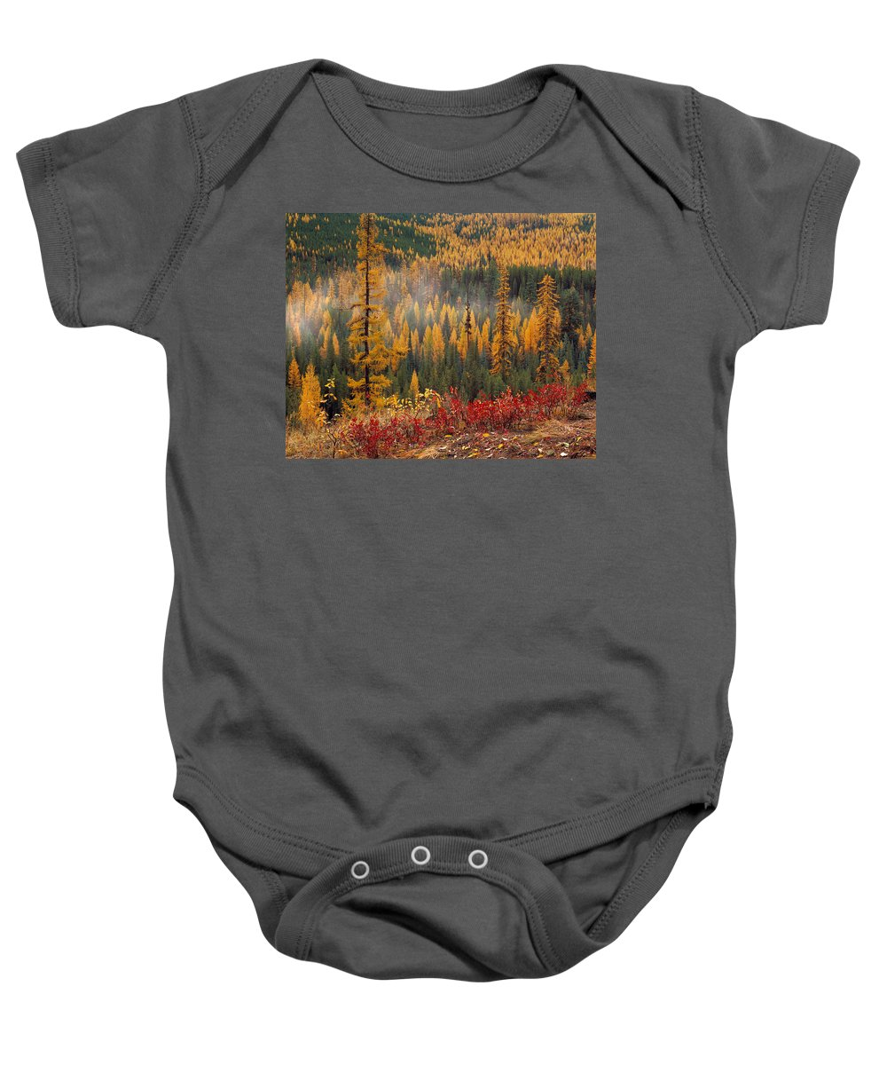 Washington Baby Onesie featuring the photograph Western Larch Forest Autumn by Leland D Howard