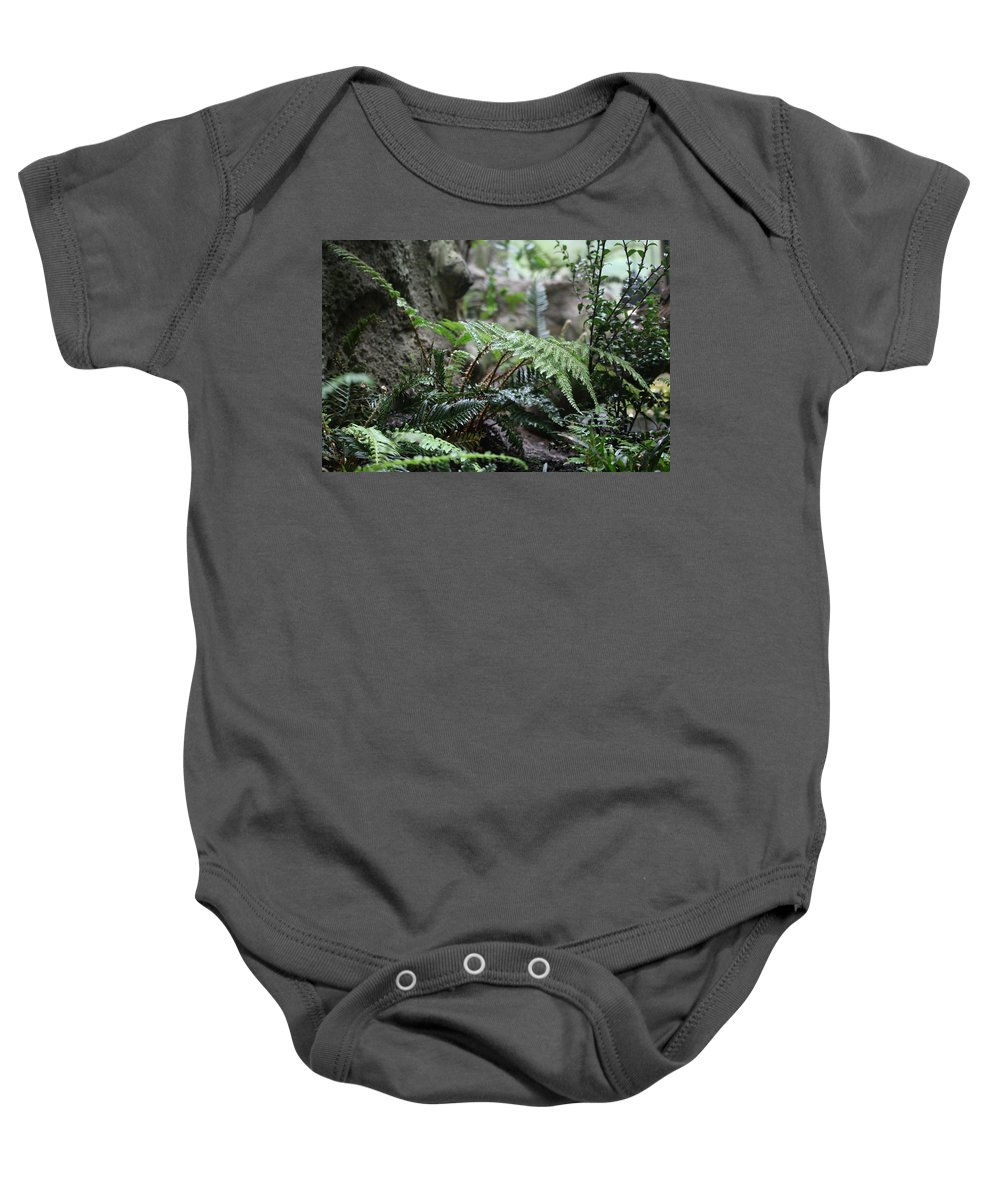 Baby Onesie featuring the photograph Wet Ferns by Crooked Cat Art and Photography