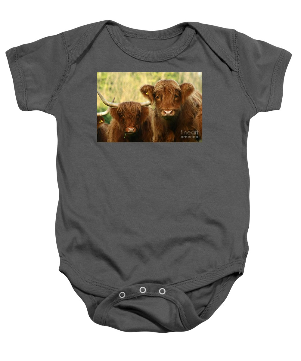 Cow Baby Onesie featuring the photograph Whats Up by Angel Ciesniarska