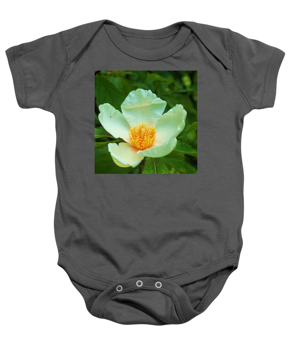 Flora Baby Onesie featuring the painting White And Yellow Flower by Eric Schiabor