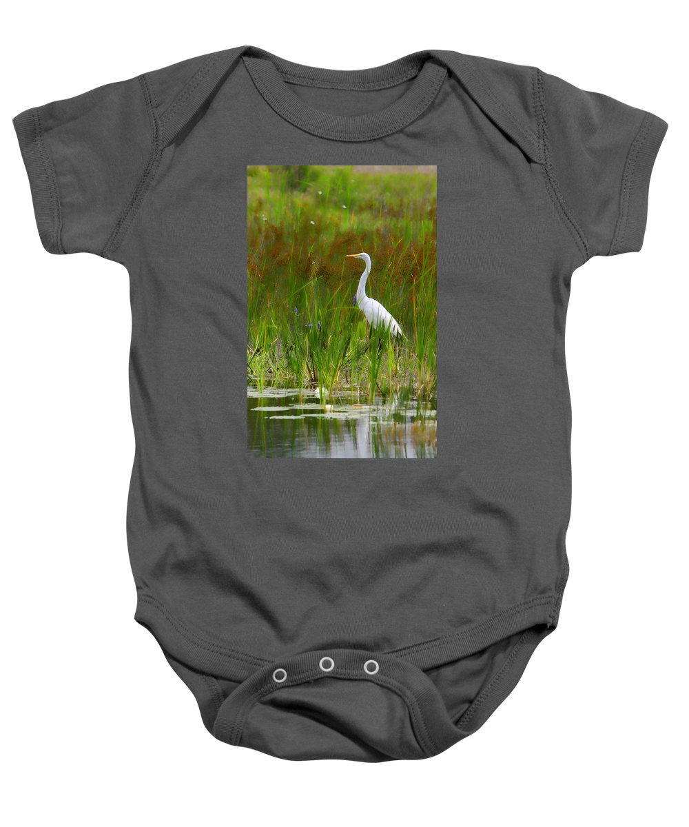Bird Egret White Florida Swamp Pond Photograph Photography Baby Onesie featuring the photograph White Egret In Waiting by Shari Jardina