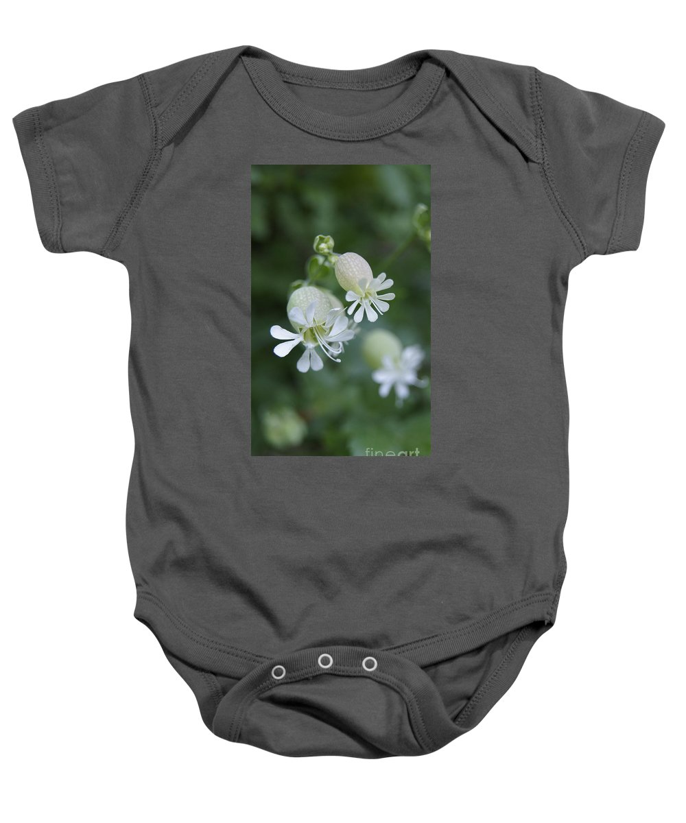 Cmouai Baby Onesie featuring the photograph White Flowers 02 by Line Gagne