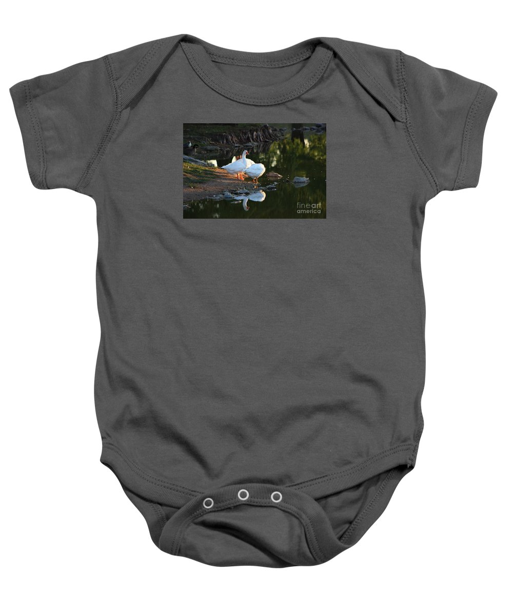 Geese Baby Onesie featuring the photograph White Geese In A Park With Water Reflection by Robert D Brozek