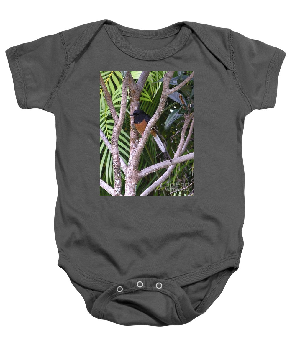 Black Birds Baby Onesie featuring the photograph White Rumped Shama by Mary Deal