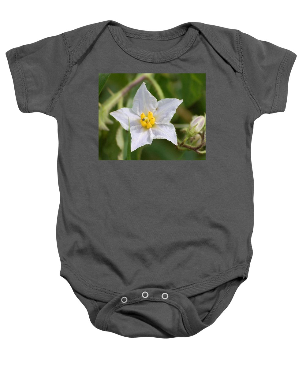 Digital Photo Baby Onesie featuring the photograph White Star by David Lane