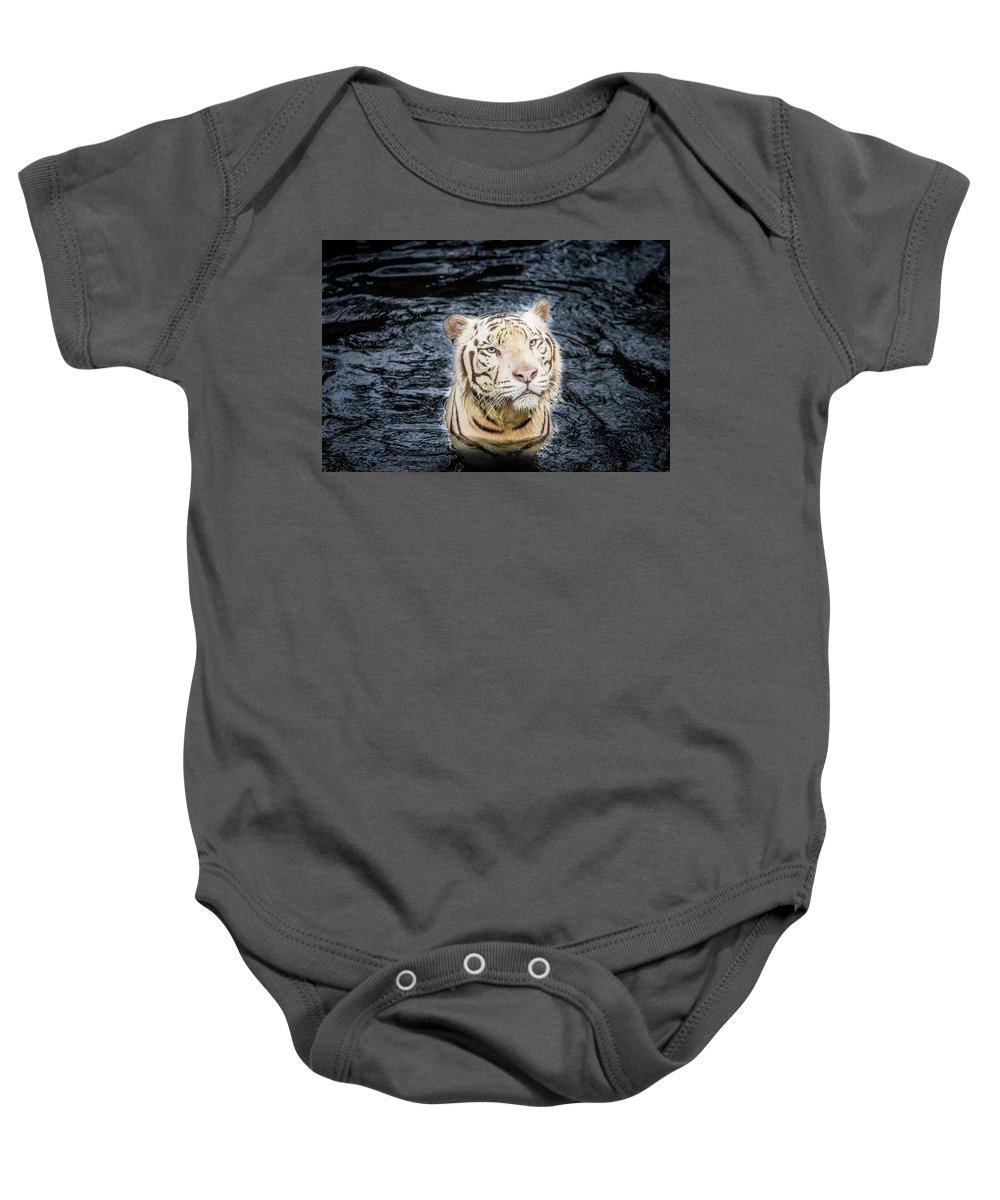 Wild Baby Onesie featuring the photograph White Tiger 20 by Jijo George