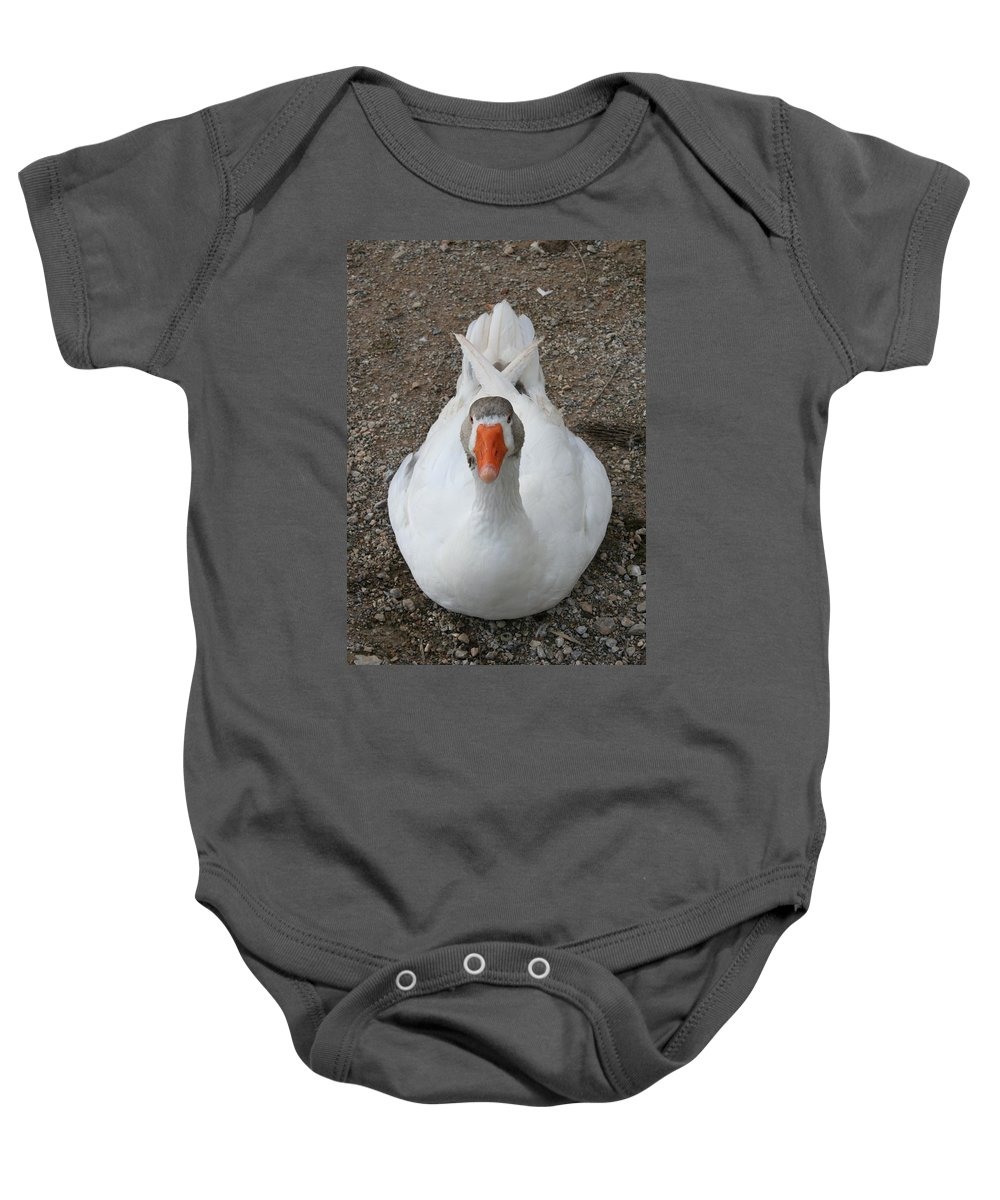 Duck Baby Onesie featuring the photograph White Wild Duck Sitting On Gravel by Taiche Acrylic Art