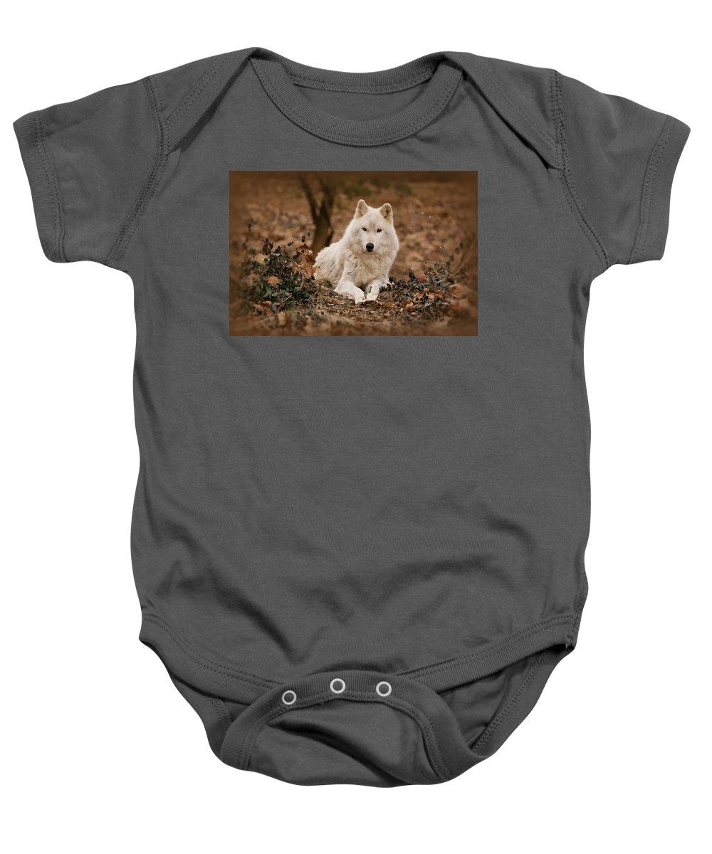 Wolf Baby Onesie featuring the photograph White Wolf by Sandy Keeton