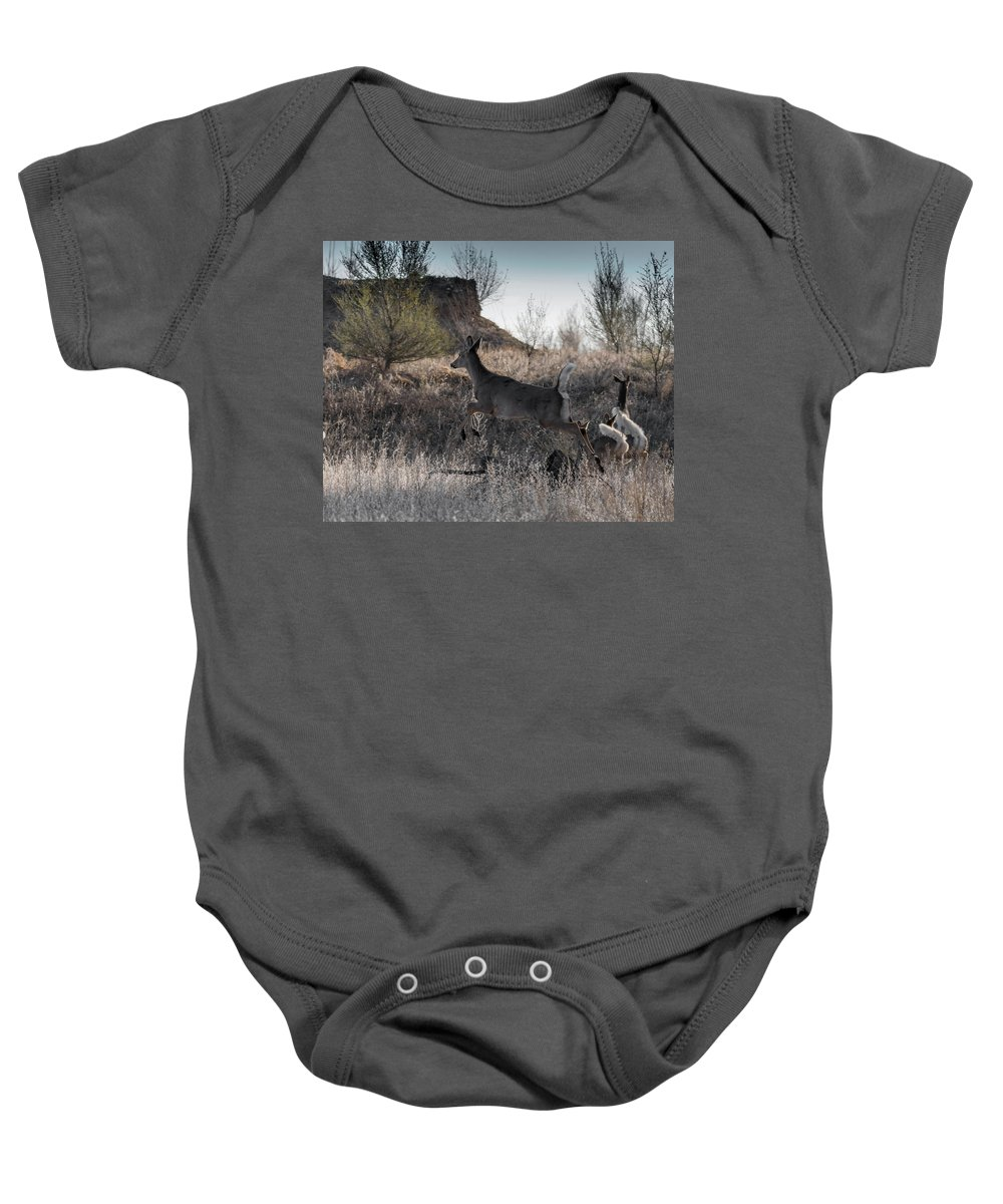 Deer Baby Onesie featuring the photograph Whitetail In Flight by Ernie Echols