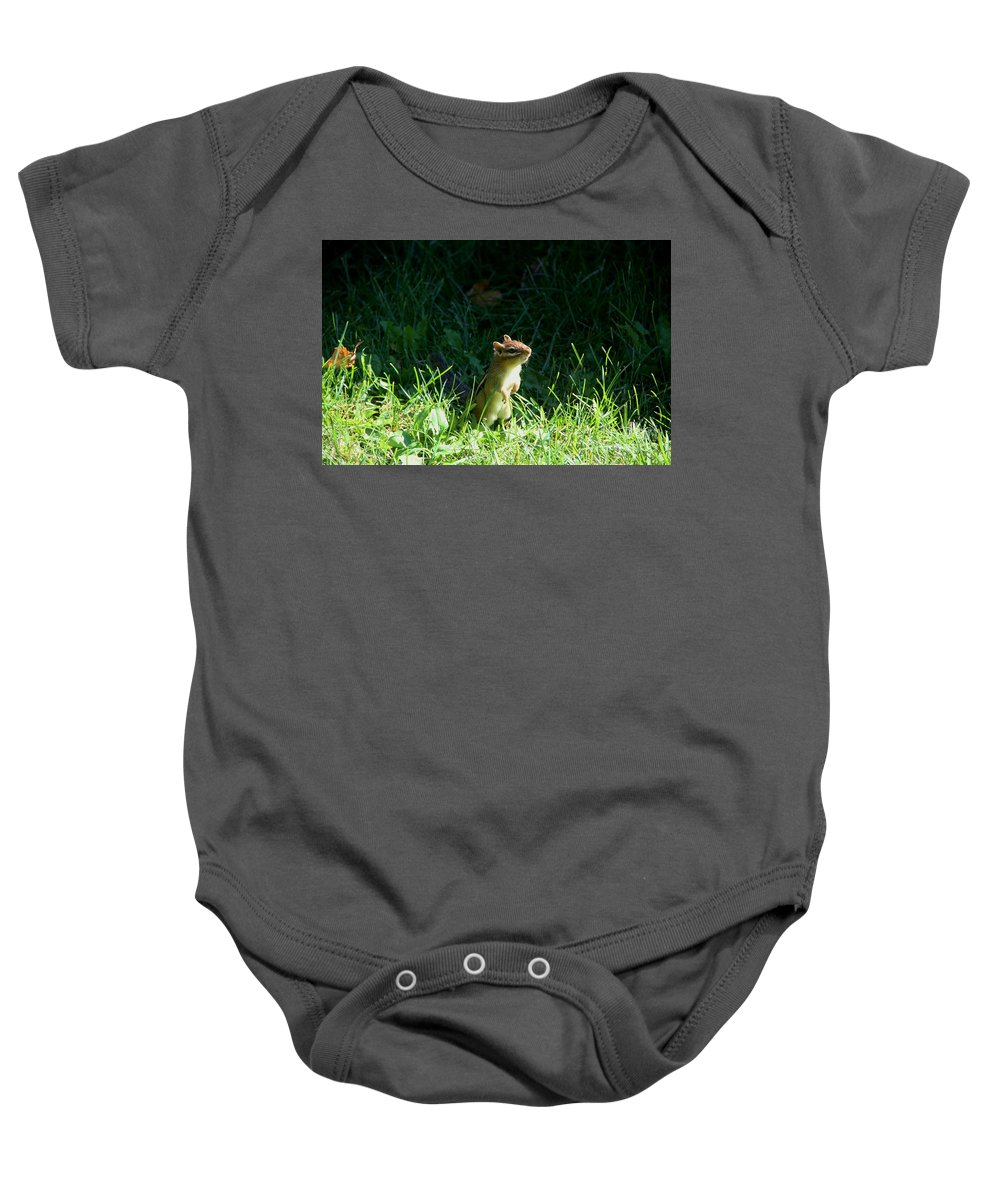 Chipmunk Baby Onesie featuring the photograph Who Me by Joi Electa