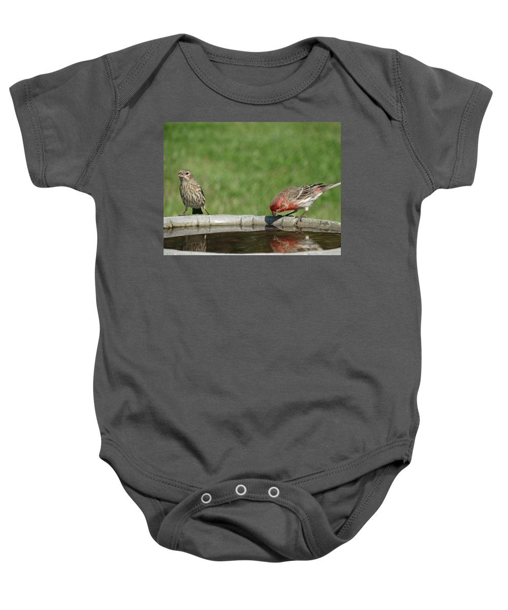 Bird Baby Onesie featuring the photograph Who's That Down There by Greg Boutz