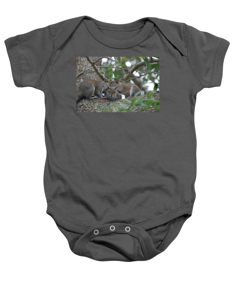 Squirrel Baby Onesie featuring the photograph Why Me by Rob Hans