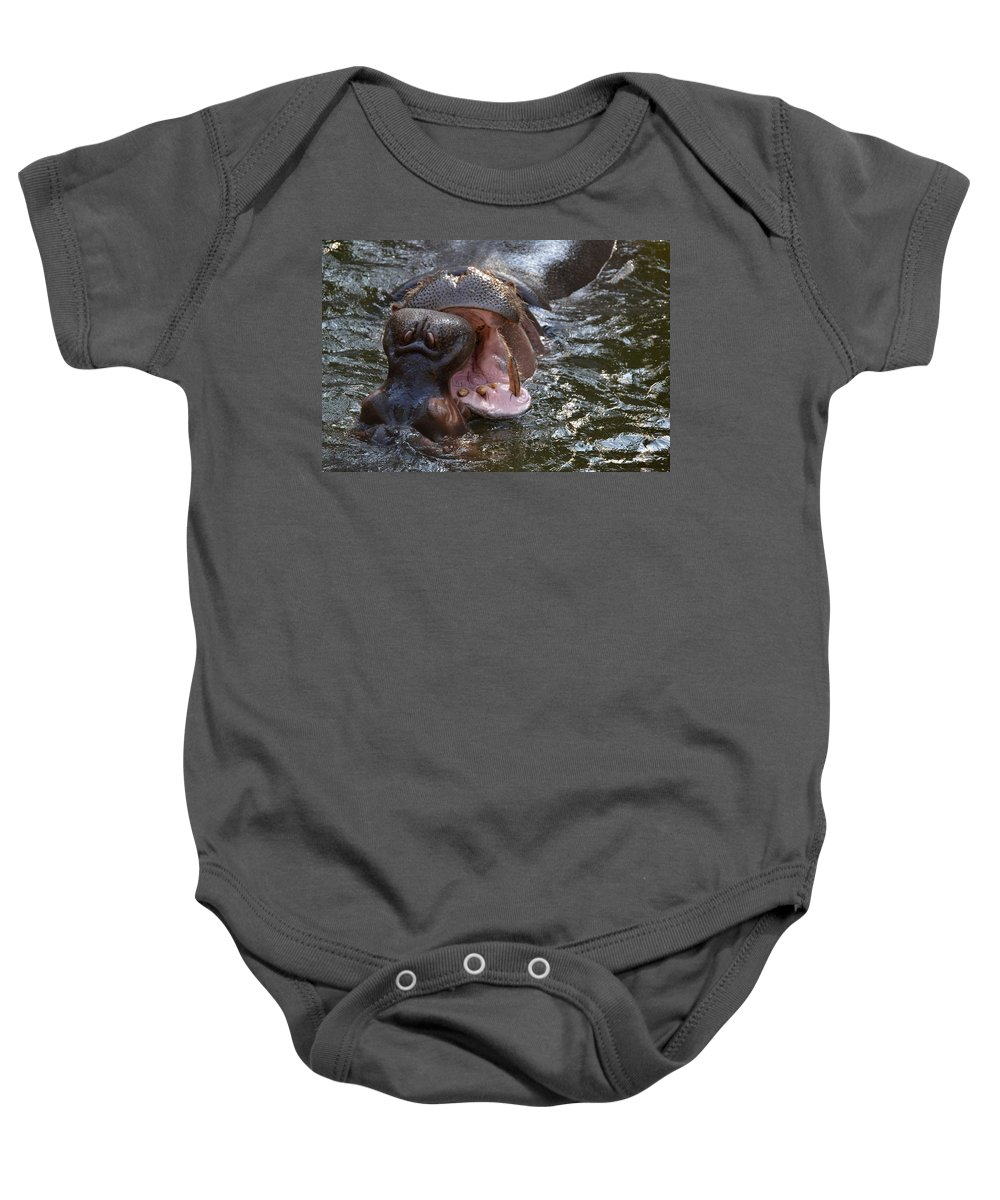 Hippos Baby Onesie featuring the photograph Wide Load by Jacqueline Howe