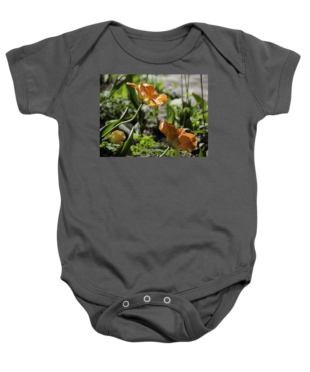 Flowers Baby Onesie featuring the photograph Wide Open Tulips by Teresa Mucha