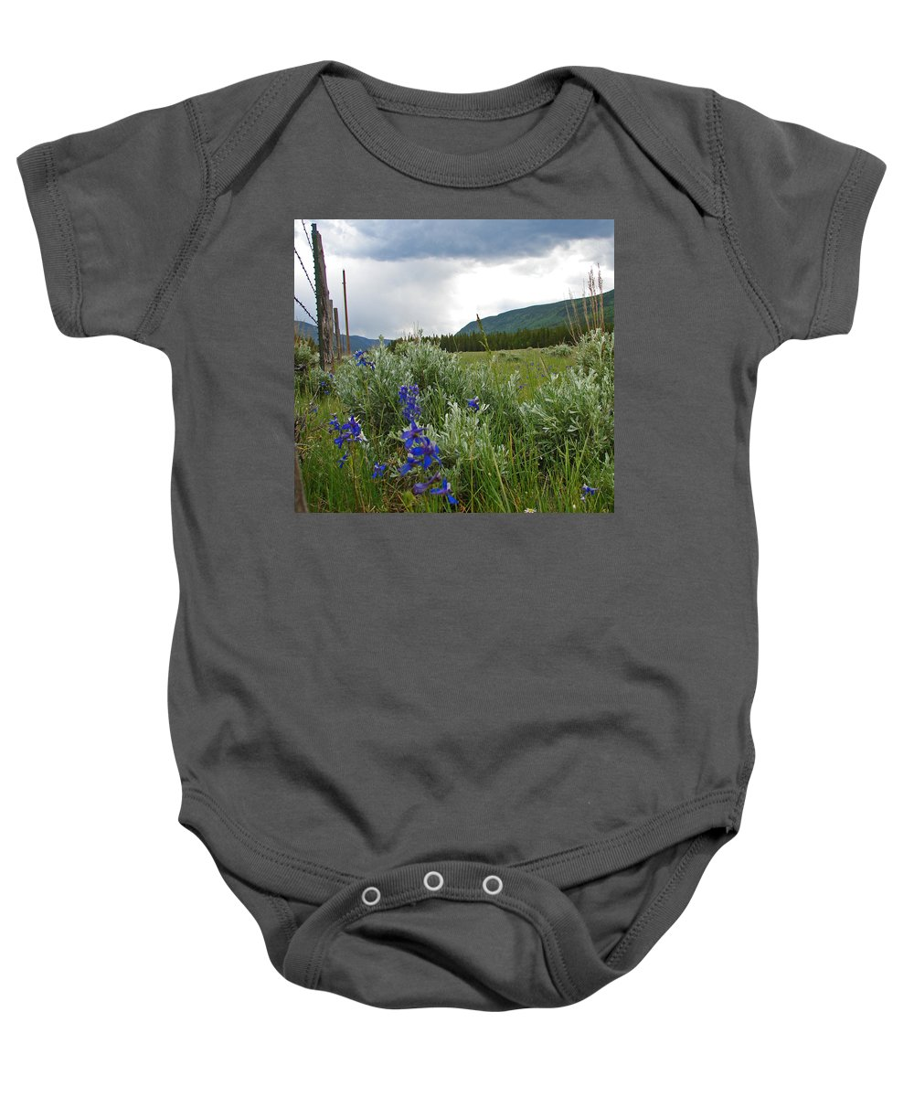Wild Flowers Baby Onesie featuring the photograph Wild Delphinium by Heather Coen
