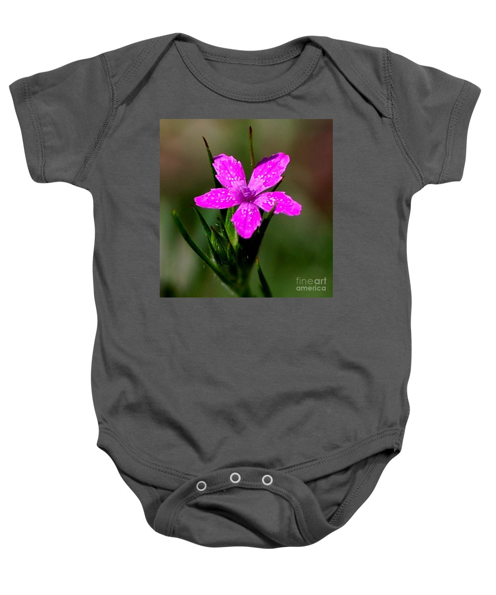 Digital Photo Baby Onesie featuring the photograph Wild Pink by David Lane