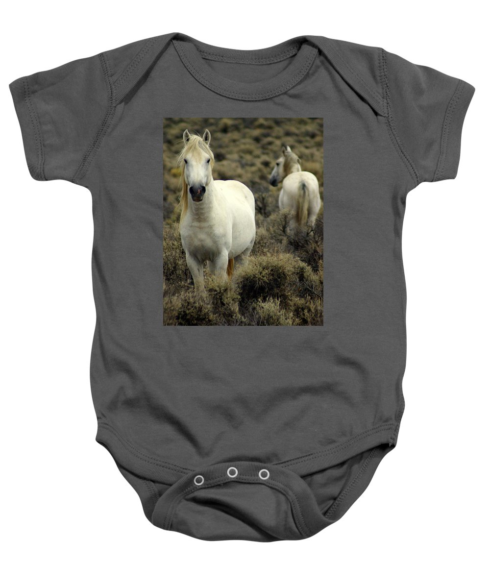 Wild Horses Baby Onesie featuring the photograph Wild Stallion by Marty Koch