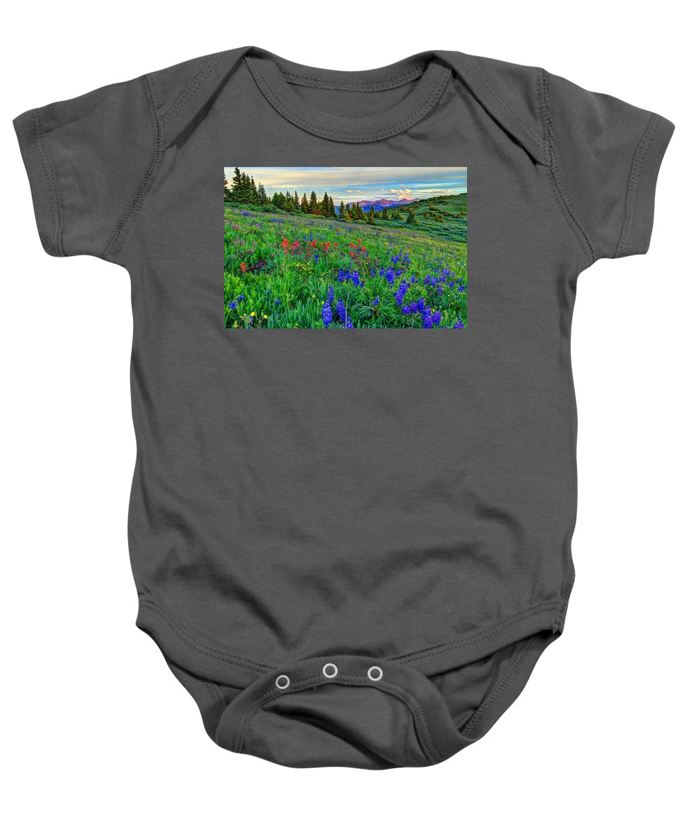 View Baby Onesie featuring the photograph Wildflower Hill by Scott Mahon