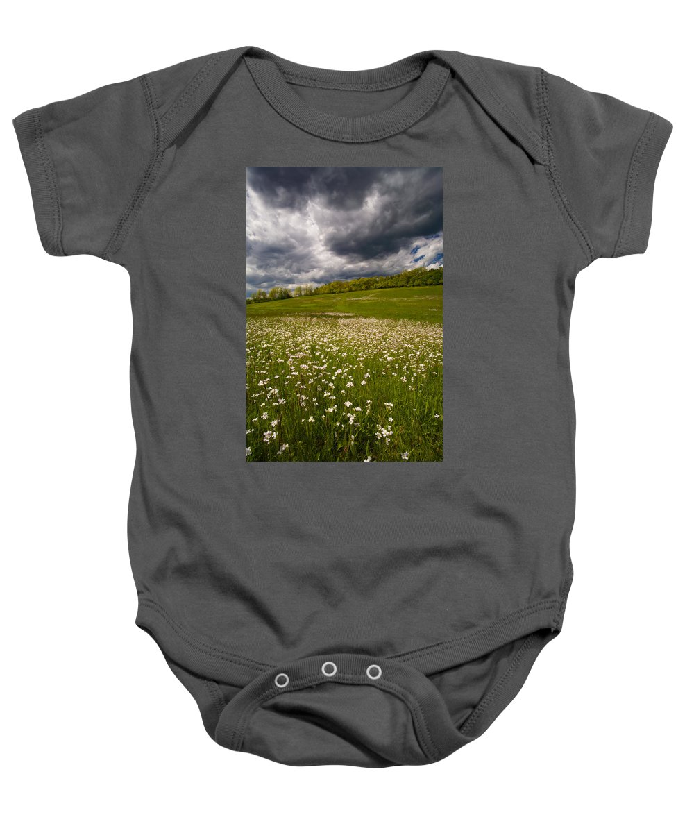 Field Baby Onesie featuring the photograph Wildflowers And Storm Clouds by Irwin Barrett