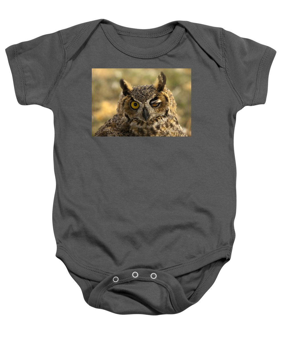 Owl Baby Onesie featuring the photograph Wink by Mike Dawson