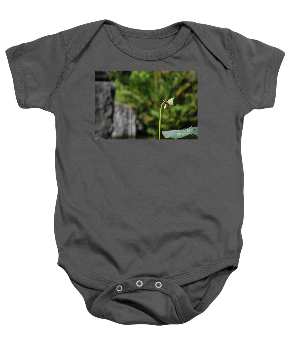 Baby Onesie featuring the photograph Without Protection Number Three by Heather Kirk