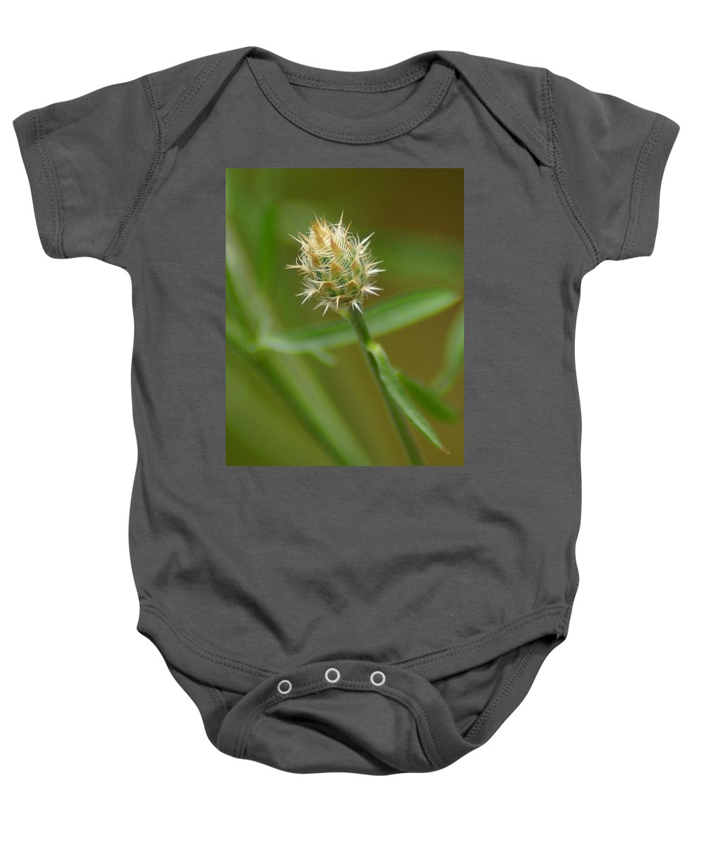 Flowers Baby Onesie featuring the photograph Wound Up by Ben Upham III