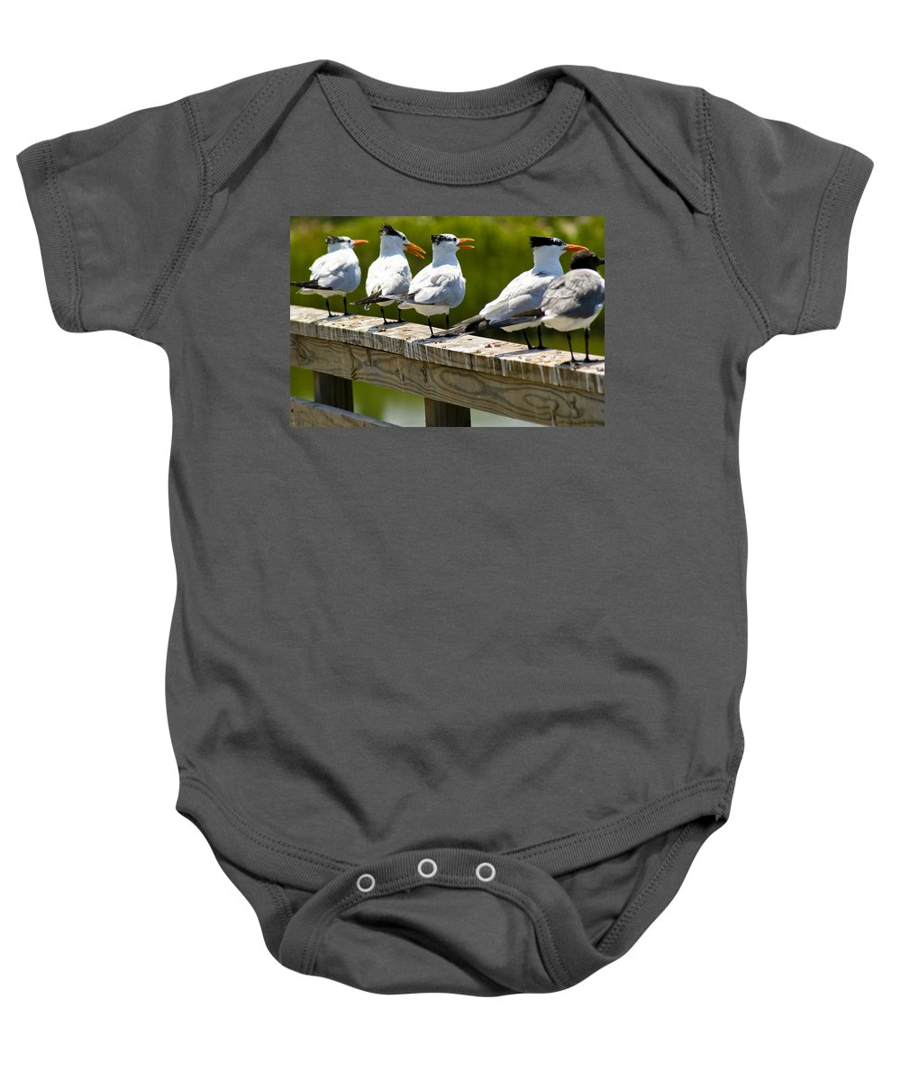Bird Baby Onesie featuring the photograph Yackety Yackety by Marilyn Hunt