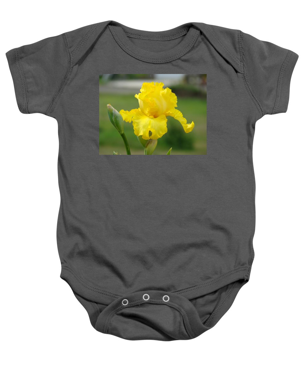 �irises Artwork� Baby Onesie featuring the photograph Yellow Iris Flowers Art Prints Cards Irises Summer Garden Landscape by Baslee Troutman