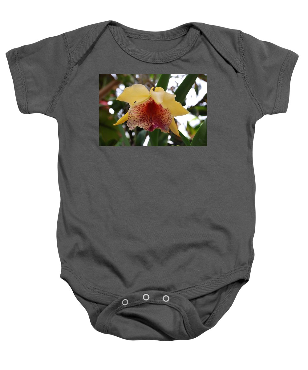 Macro Baby Onesie featuring the photograph Yellow Red Orchid by Rob Hans