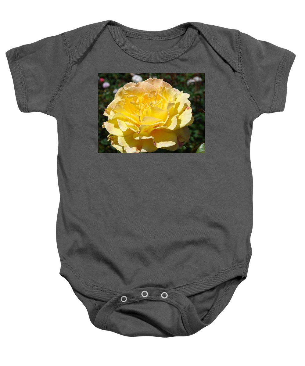 Rose Baby Onesie featuring the photograph Yellow Rose Sunlit Summer Roses Flowers Art Prints Baslee Troutman by Baslee Troutman