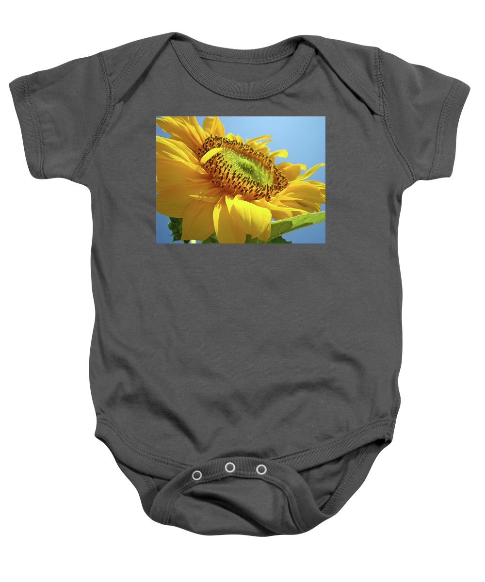 Sunflower Baby Onesie featuring the photograph Yellow Sunflower Blue Sky Art Prints Baslee Troutman by Baslee Troutman