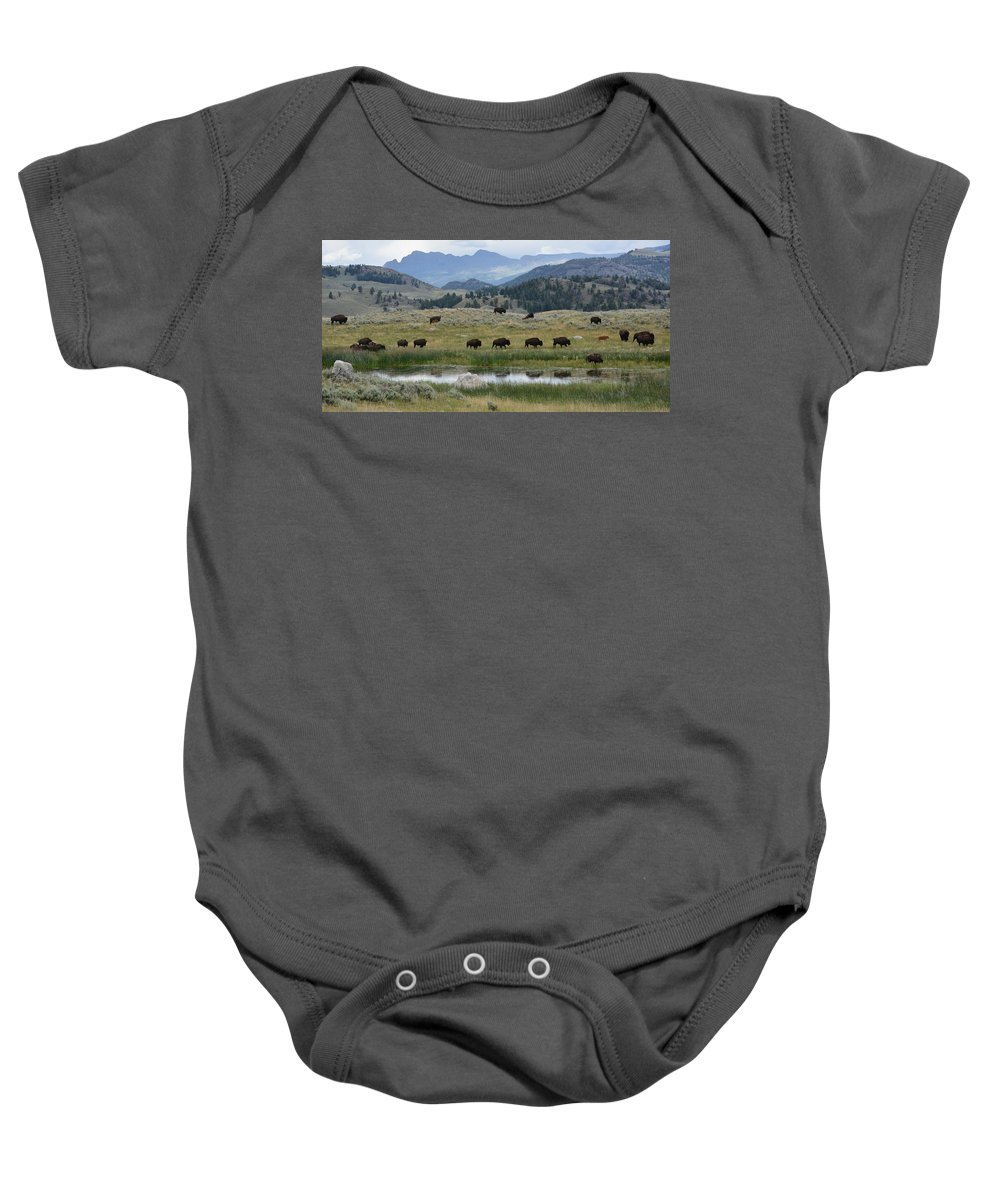 Yellowstone Baby Onesie featuring the photograph Yellowstone Bison by Sonja Bratz