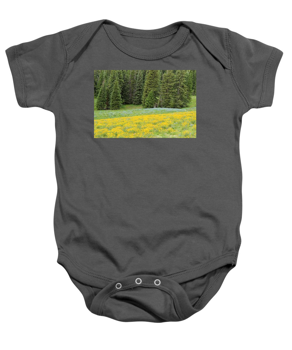 yellowstone National Park Baby Onesie featuring the photograph Yellowstone Meadow by Wendy Fox