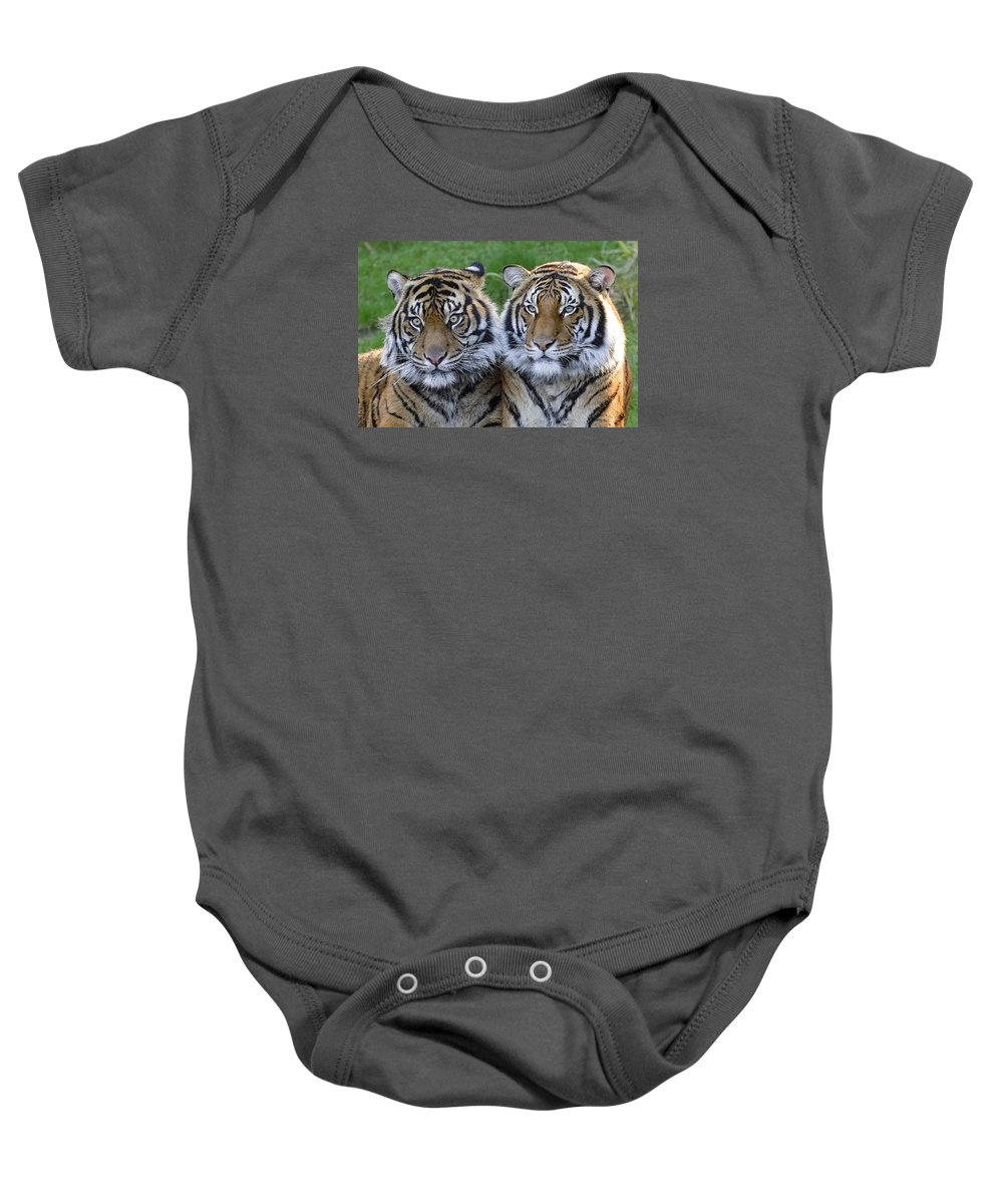 You Don't Say Baby Onesie featuring the photograph You Don't Say by Wes and Dotty Weber