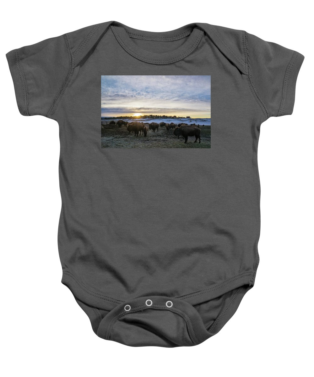 Buffalo Herd Baby Onesie featuring the photograph Zion Mountain Ranch Buffalo Herd by Sheryl Trunick