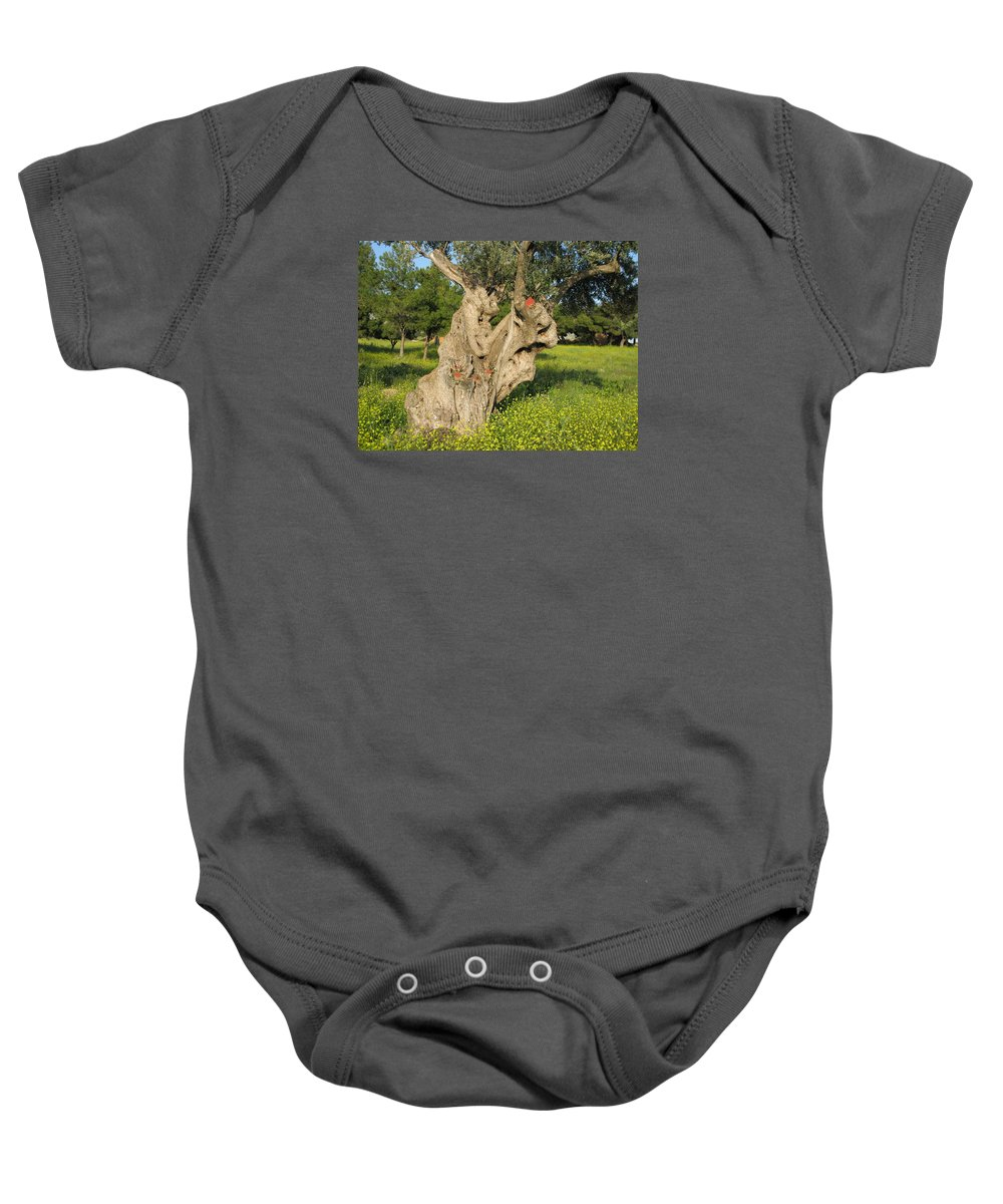 Old Olive Tree Baby Onesie featuring the photograph Zoomorphical Olive by Andonis Katanos