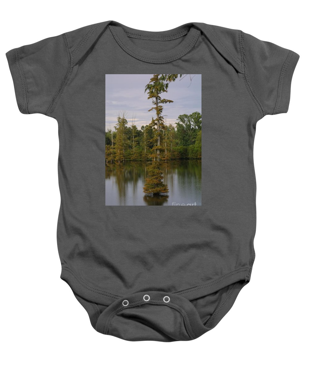 Tennessee Cypress Baby Onesie featuring the photograph Tennesse Cypress In Wetland by Darren Dwayne Frazier