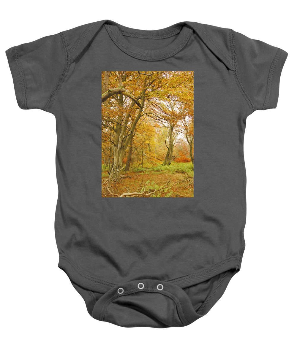 Trees Baby Onesie featuring the photograph Autumn Colours by Victor Lord Denovan